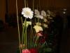 Dekoracje kwiatowe na Szczecińskie Forum Oświatowe 09.2014