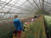 Przedszkolaki wizyta w Ogrodniku - pazdziernik 2014