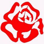 roza_ceo_tlobiale